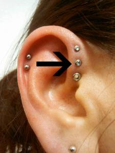 ear piercing chart ear piercing types and ear piercing near me. Black Bedroom Furniture Sets. Home Design Ideas