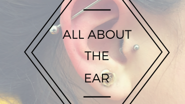 All About the Ears